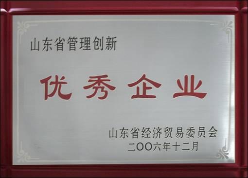 山东省管理创新优秀企业